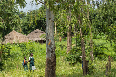 Children on their way from school.