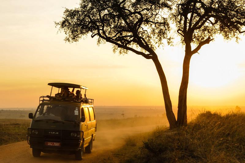 Our team took a day trip through Murchison Falls National Park