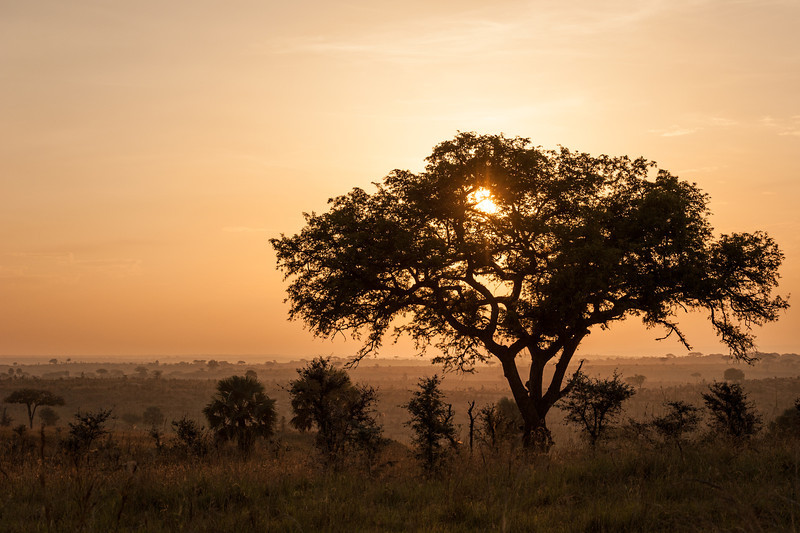 Sunrise over Murchison Falls Park