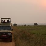 Searching in Murchison Falls