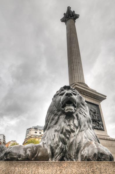 Lion Statue, Trafalgar Square, London, UK
