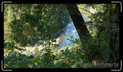 """Most of the trail was within 50 horizontal feet of the river. The vertical distance ranged from 5 feet to """"a long way down""""."""