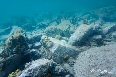 Underwater Rock Garden