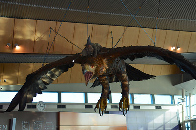 Wellington Airport Scotland Trip July 2014