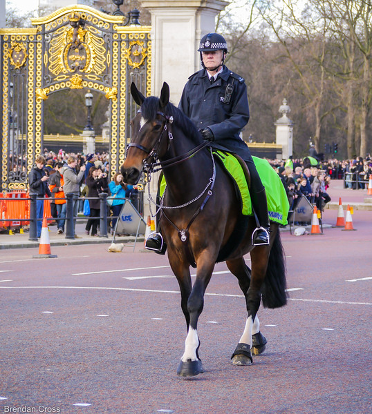 Changing the Guard, Buckingham Palace