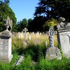 Brompton Cemetery: look upon my works, ye middle classes, and despair!