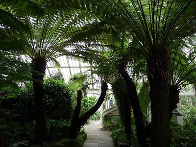 Kew Gardens June 19, 2010