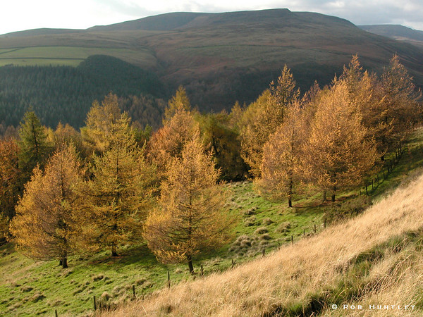 Scene in Derbyshire on a from a hiking trail near Derwent. © Rob Huntley