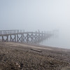 Foggy seashore