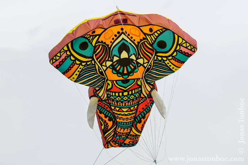 2019 Bedford International Kite Festival