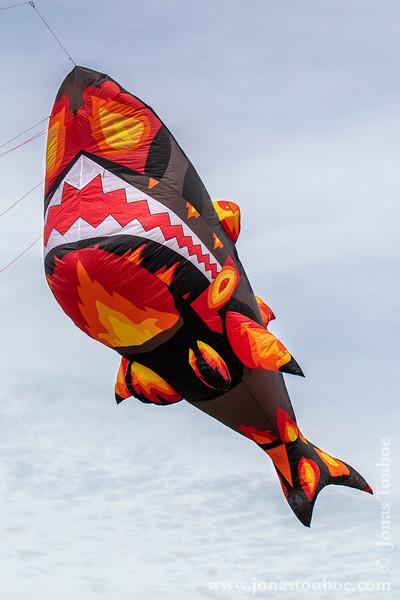 2019 Bedford International Kite Festival