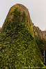 Corfe Castle - Ivy Covered Outer Bailey Gatehouse