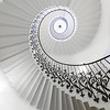 The Tulip Staircase 1