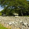 Dyffryn Ardudwy Burial Chambers, Wales