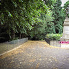 Cambuslang Park, Glasgow