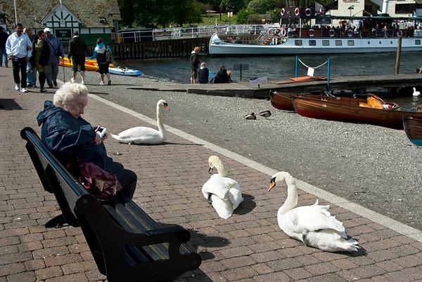 Lakeland_UK_June2010_06