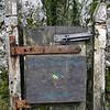 Hyning Wood