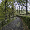 Old Man Lower Trail.<br /> Coniston