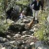 Warton Crag Trail