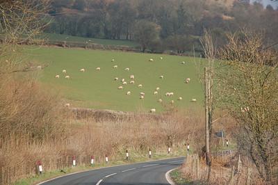 Wales 2007.03.24