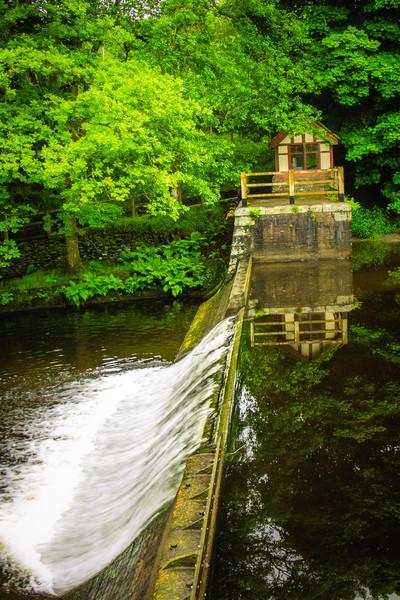 Lake Vyrnwy Sculpture Park, Wales
