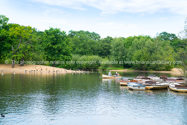 Young family enjoys use of row boats on small lake in Epping Forest.