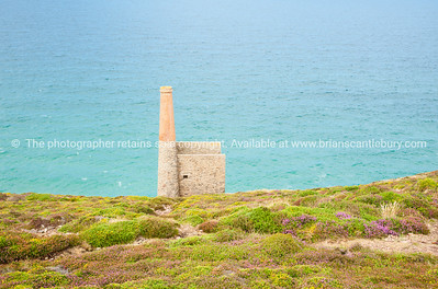 Tin mines, Cornwall, UK-43