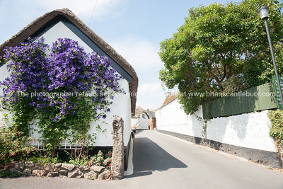 uk,england,cornwall (212 of 1370)