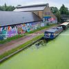Narrowboats moored along algae covered Regents Canal, London