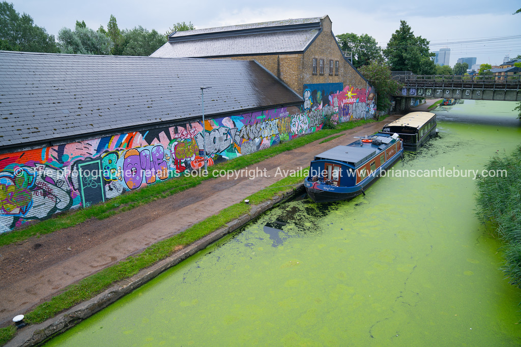Narrowboats moored along algae covered Regents Canal, London
