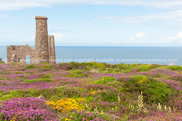 Cornwall tin mine ruins
