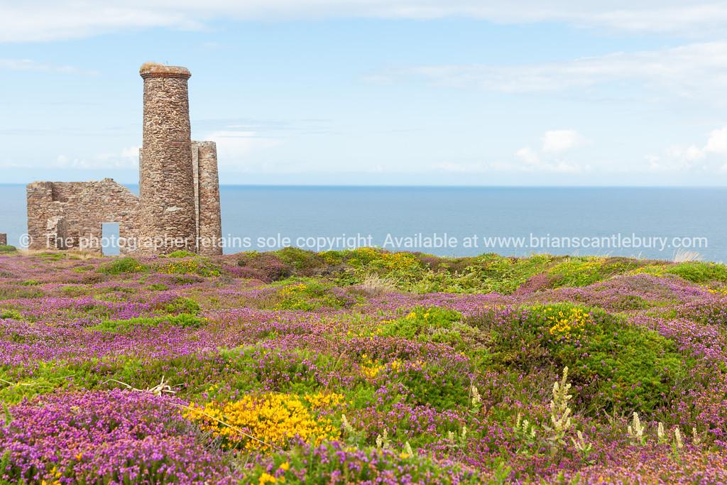 Cornwall tin mine ruins