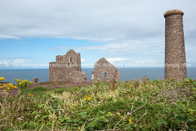 Tin mines, Cornwall, UK-99