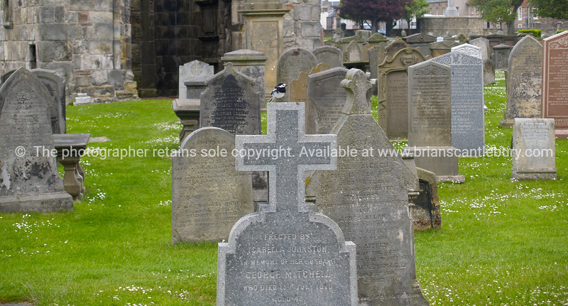 """Headstones. SEE ALSO:   <a href=""""http://www.blurb.com/b/893070-impressions-of-the-uk"""">http://www.blurb.com/b/893070-impressions-of-the-uk</a>"""
