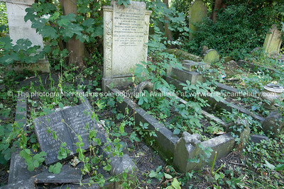 uk,england,cornwall (40 of 1370)