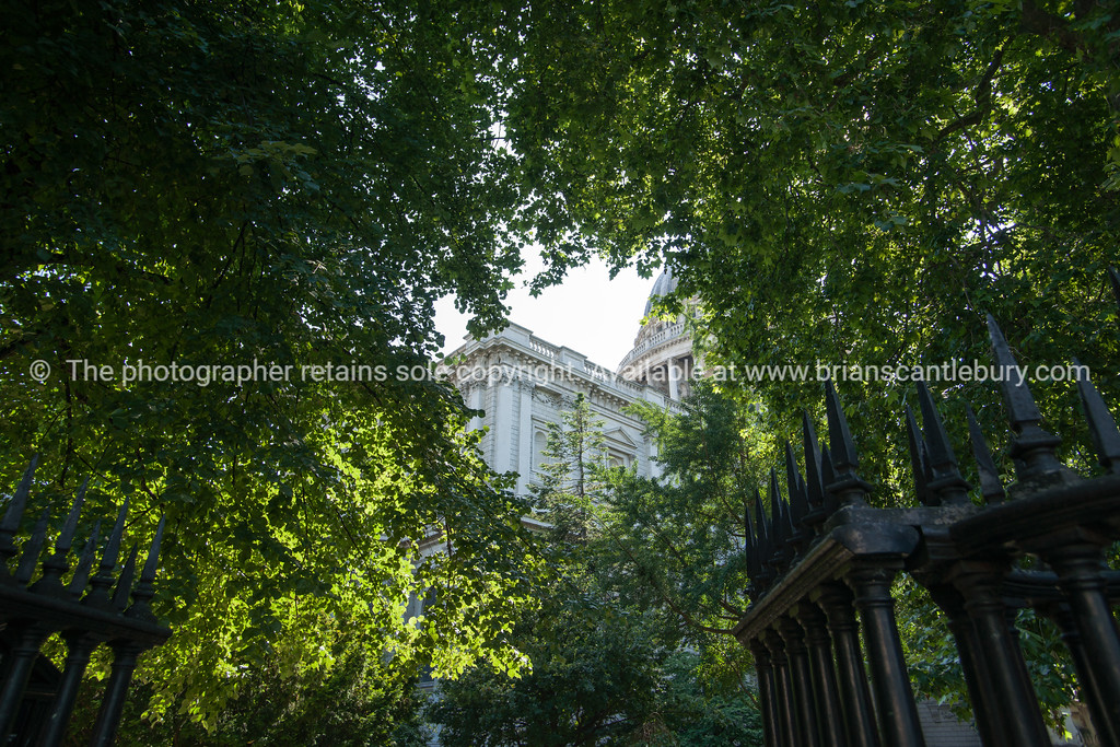 Saint Paul's Cathedral, London, UK, through foliage and fence.