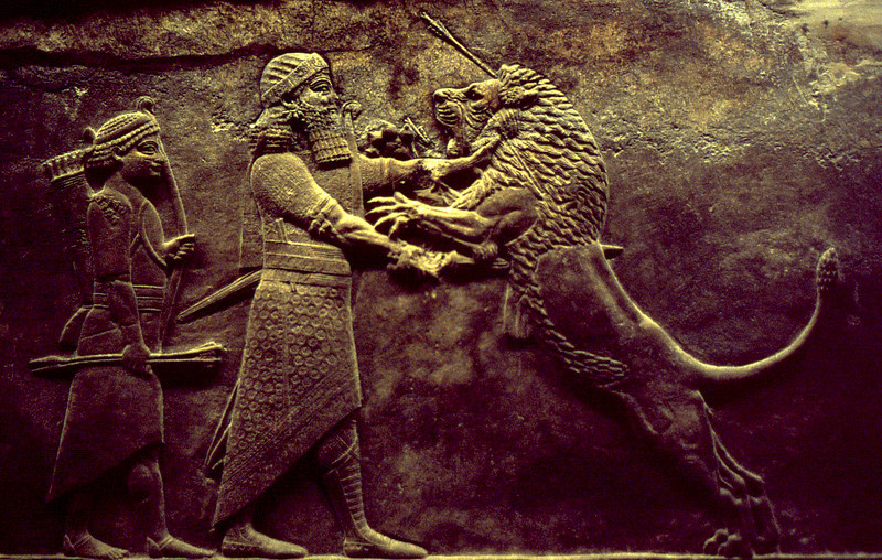 Wounded lion attacking a hunter. Assyrian wall relief, from the collection of the British Museum, London.