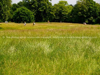 Public park, Hamstead Heath, England, Britain, United Kingdom. SEE ALSO:  www.blurb.com/b/893070-impressions-of-the-uk
