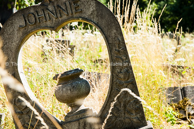 uk,england,cornwall (13 of 1370)