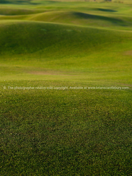 """Rolling surface of golf fairway. SEE ALSO:   <a href=""""http://www.blurb.com/b/893070-impressions-of-the-uk"""">http://www.blurb.com/b/893070-impressions-of-the-uk</a>"""