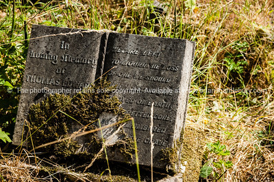 uk,england,cornwall (15 of 1370)