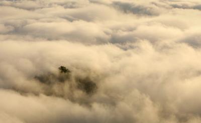 hillside fogchris_8423