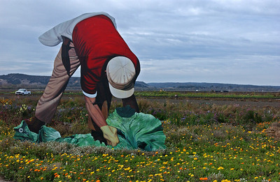 farm worker cutout_3151