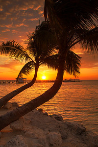 Cheeca Sunrise 2 - Islamorada, Florida