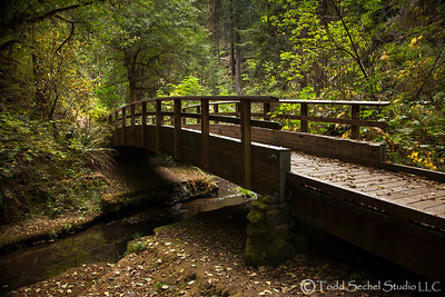 Van Damme State Park - Little River, California Oct132012_4330