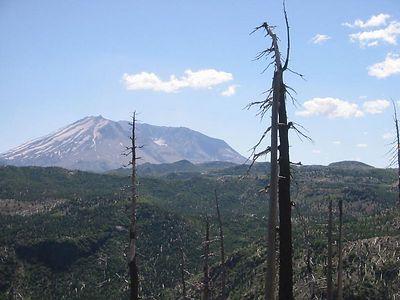 Mt. St. Helens, Washington July 22, 2003