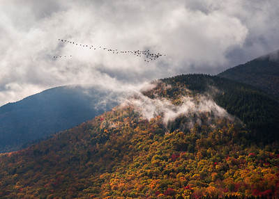 Geese Flying South For The Winter Over Autumn Mountains