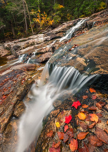 Autumn Cascades In The White Mountains