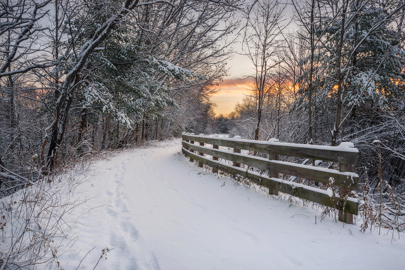 Snowy Morning Light On The Trail