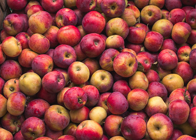 A Crate Full Of Red Apples